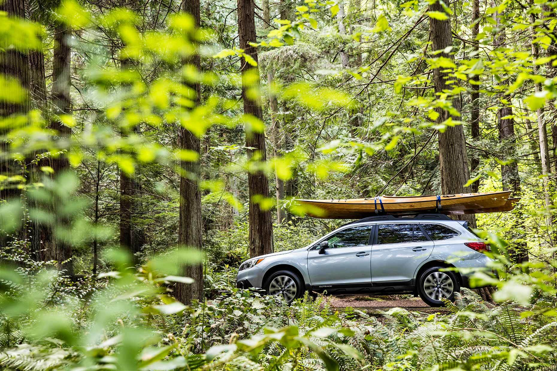 Christopher Nelson Photography|Subaru Outback|Forest|Seattle